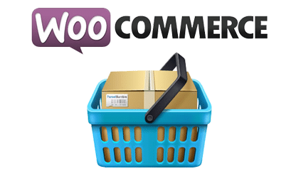 WooCommerce Support Services