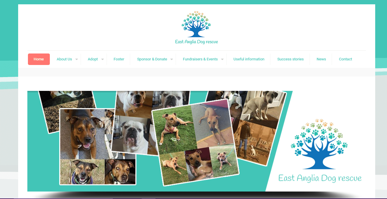 east anglia dog rescue